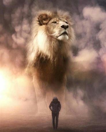 蔚蓝狮皇之现世