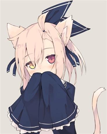 来到异界的我捡到了一只猫娘