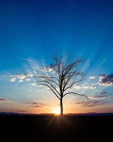 带着别人的记忆修仙就是快乐
