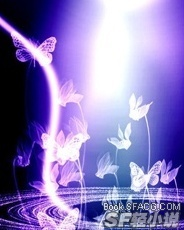 破碎的蝴蝶羽翼