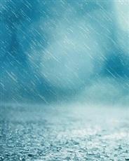 清晨我们在雨里相遇