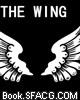 身后的翅膀