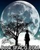 灵魂守护夜