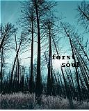 Forest soul