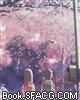 樱花盛开的季节