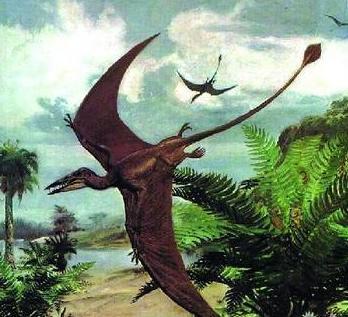 但是此时天空盘旋着的却是6500万年前已经灭绝的恐龙之一——翼龙—